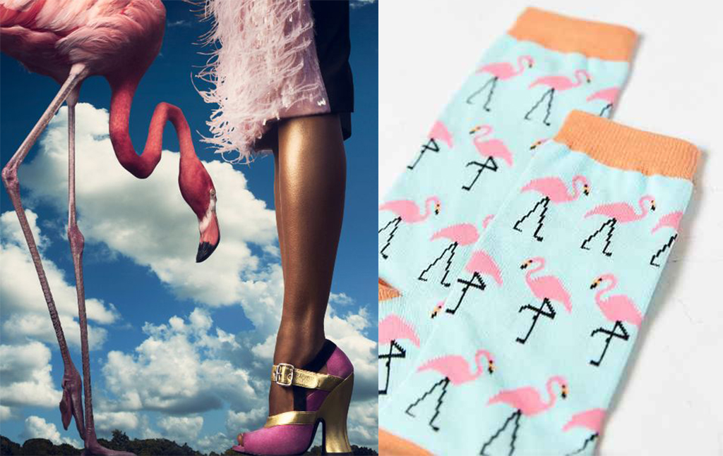 flamingo shoes 4